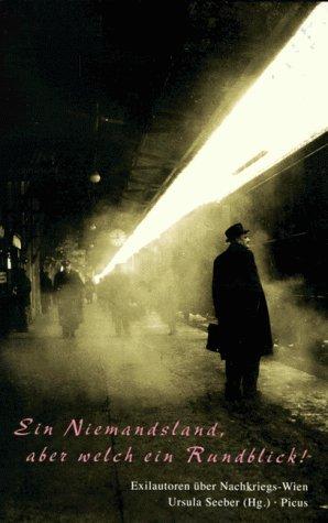9783854524229: Ein Niemandsland, aber welch ein Rundblick: Exilautoren �ber das Nachkriegs-Wien