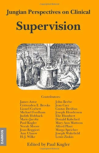 9783856305529: Jungian Perspectives on Clinical Supervision