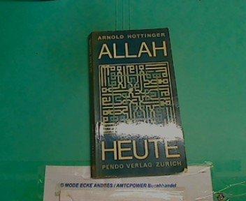 9783858420534: Allah heute (German Edition)