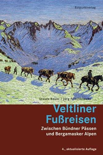9783858693495: Veltliner Fussreisen: Zwischen Bünder Pässen und Bergamsaker Alpen