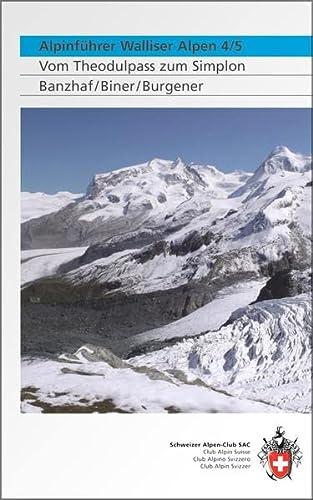 Alpinführer Walliser Alpen 4/5: Bernhard R. Banzhaf