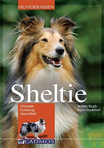 9783861277699: Sheltie: Charakter - Erziehung - Gesundheit