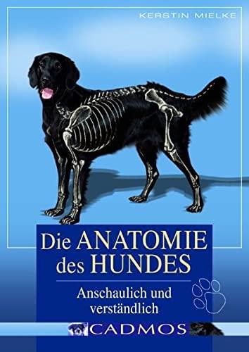 anatomie des hundes - ZVAB
