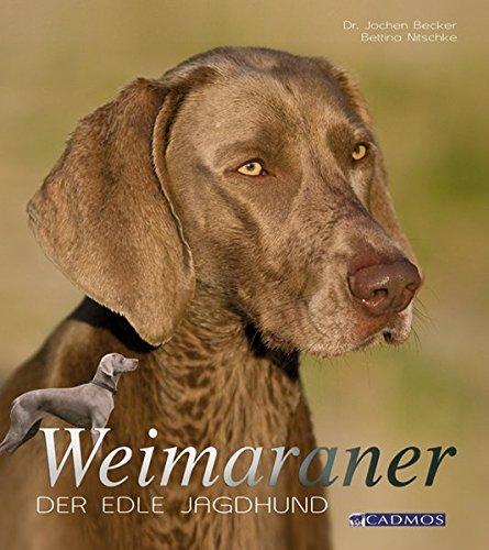 9783861278054: Weimaraner: Der edle Jagdhund