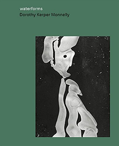 9783862065400: Dorothy Kerper Monnelly: Waterforms