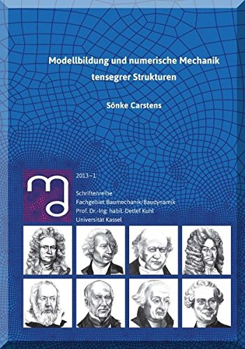 Modellbildung und numerische Mechanik tensegrer Strukturen: Sonke Carstens