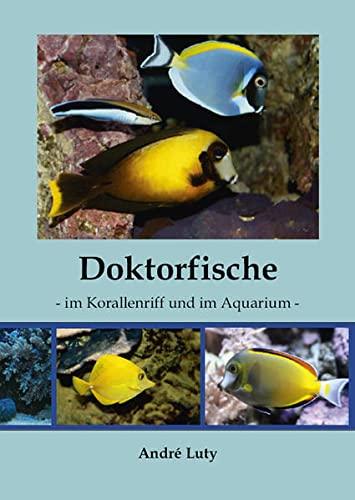 Doktorfische im Korallenriff und im Aquarium: Luty, Andre