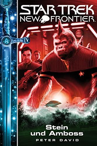 9783864257773: Star Trek - New Frontier 13: Stein und Amboss