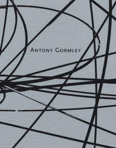 9783865210296: Antony Gormley