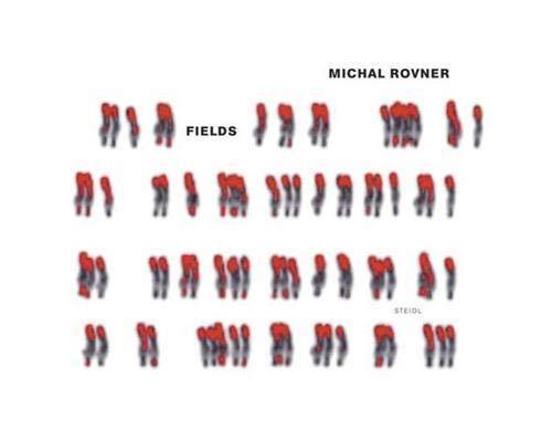 Michal Rovner: Fields: Durand, R?gis, Lotringer,