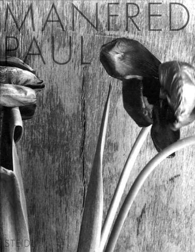 Still Life Photographs 1983-1985: Eugen Blume, Manfred