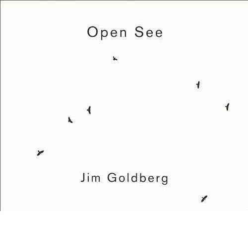 9783865218261: Jim Goldberg: Open See