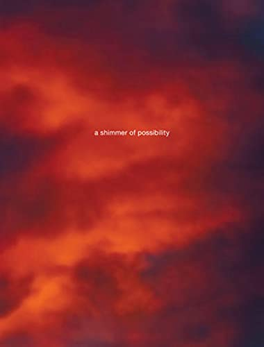 9783865218629: Paul Graham: A Shimmer of Possibility