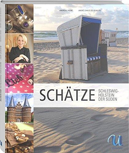 9783865288615: Schätze aus Schleswig-Holstein. Der Süden