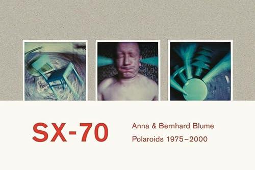 SX-70 : Polaroids et collages de Polaroids 1975-2000 - Jean-Luc Monterosso; Emmanuelle de L'Ecotais; Francoise Paviot
