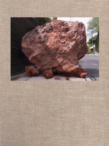 9783865609205: Jimmie Durham: Amoxohtli: A Road Book