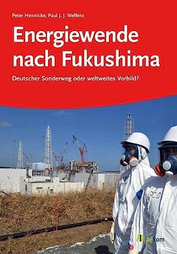 9783865813183: Energiewende nach Fukushima: Deutscher Sonderweg oder weltweites Vorbild?
