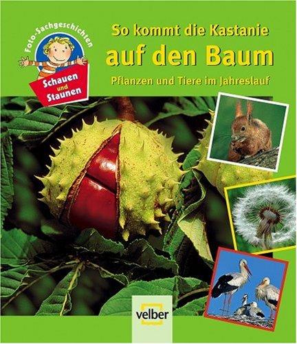 9783866135192: Schauen und Staunen 7. So kommt die Kastanie auf den Baum: Pflanzen und Tiere im Jahreslauf. Foto-Sachgeschichten