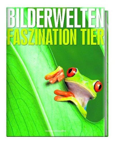 9783866158085: Bilderwelten - Faszination Tier