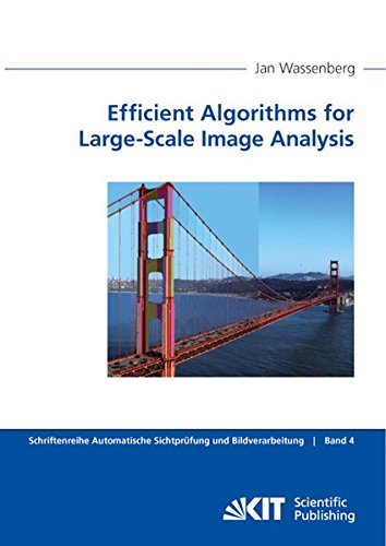 9783866447868: Efficient Algorithms for Large-Scale Image Analysis