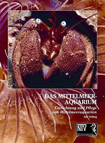 Das Mittelmeeraquarium: Einrichtung und Pflege von Mittelmeeraquarien: Kai Velling