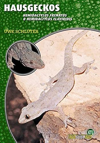 9783866590625: Hausgeckos - Hemidactylus Frenatus & Hemidactylus Flaviridis