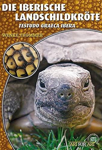 9783866591219: Die Iberische Landschildkröte: Testudo graeca ibera