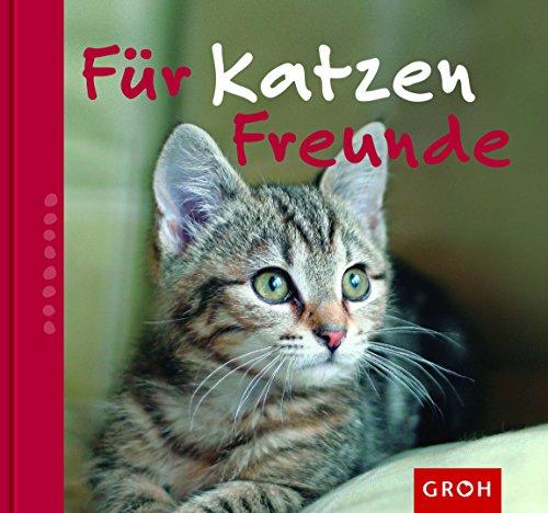 Für Katzenfreunde: Nina Sandmann