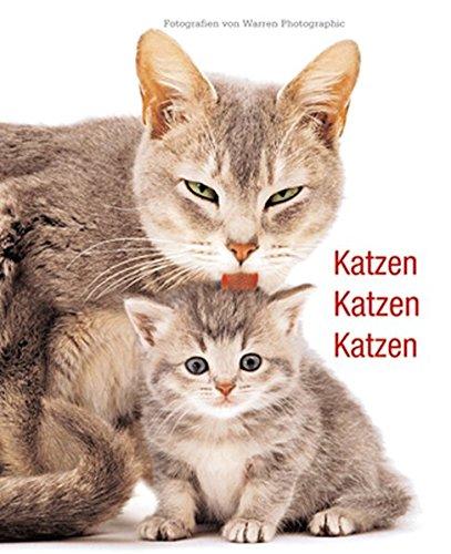 9783867260756: Katzen, Katzen, Katzen