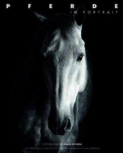 Pferde im Portrait: Katrin Schmeissner