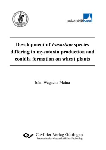 Development of Fusarium species differinh in mycotoxin production and conidia formation on wheat ...