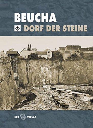 9783867291156: Beucha: Dorf der Steine