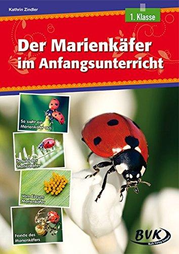 Der Marienkäfer im Anfangsunterricht (Pamphlet): Kathrin Zindler
