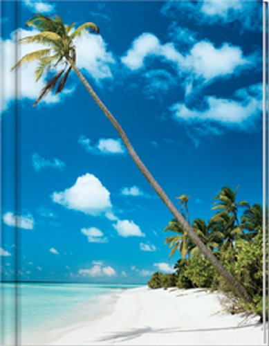 9783867597098: Note Book Blank Beach with Palm Tree