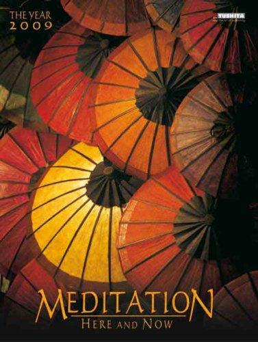 9783867651691: Meditation 2009