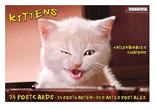 9783867655040: Kittens (Postcard Book)