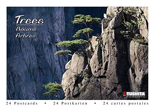 9783867656214: Trees (Postcard Book)