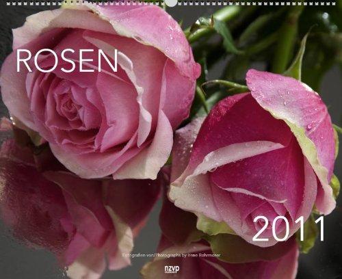 9783867676755: Rosen 2011. XL Wide