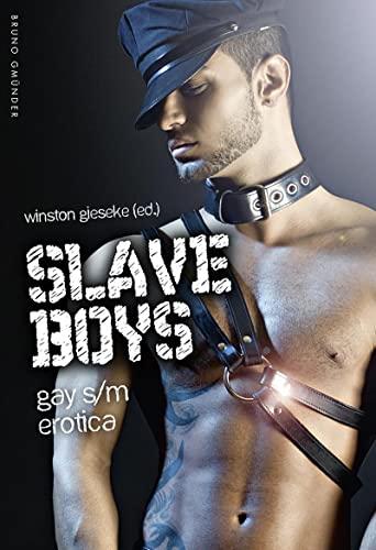 9783867877886: Slave Boys: Gay s/m erotica