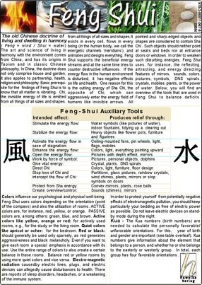 9783868110678: Feng Shui - Medical Card