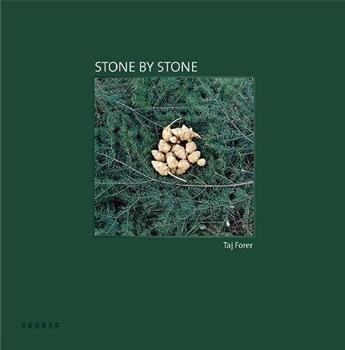 Stone by Stone (Signed): Forer, Taj