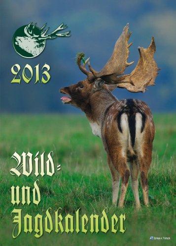 9783868484878: Wild- und Jagdkalender 2013: Gro�bildkalender
