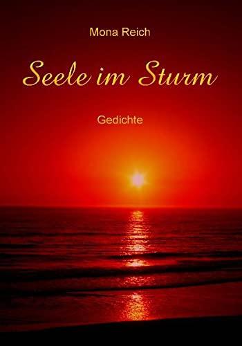 9783868504477: Seele Im Sturm (German Edition)