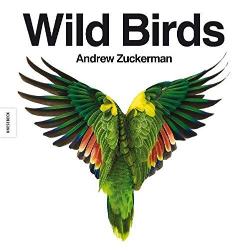 9783868731330: Wild Birds