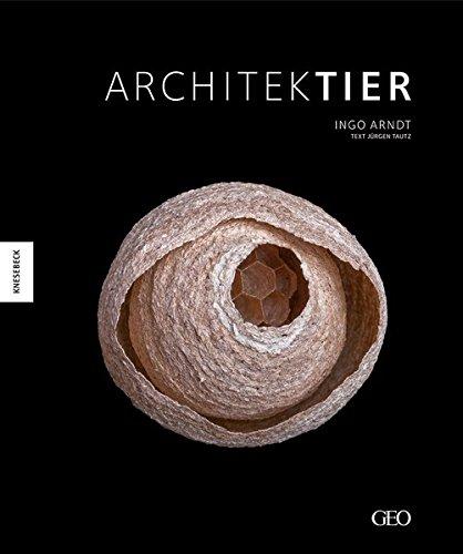 Architektier: Baumeister der Natur (Hardback): Jürgen Tautz, Ingo