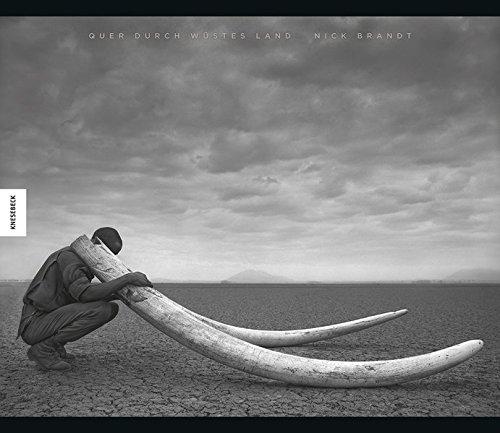 Quer durch wüstes Land: Nick Brandt