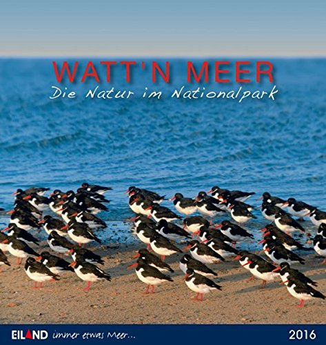 9783869263502: Watt'n Meer... Die Natur an der K�ste 2016. Postkartenkalender: 13 Wetterkarten