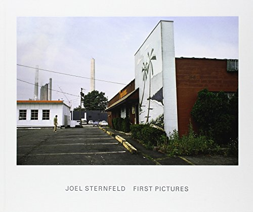 9783869303093: Joel Sternfeld : First Pictures