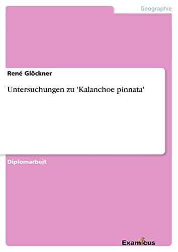 9783869431925: Untersuchungen zu 'Kalanchoe pinnata' (German Edition)