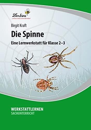 Die Spinne (PR): Grundschule, Sachunterricht, Klasse 2-3: Birgit Kraft